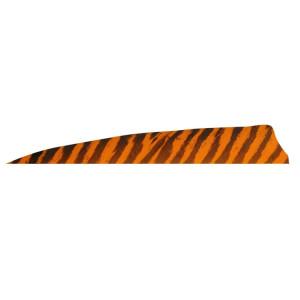 4''-Shield-Barrata-Arancione