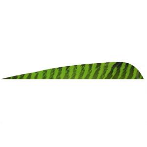 5'' Parabolic Barrata Verde