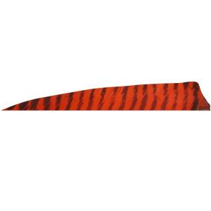 5'' Shield Barrata Rossa